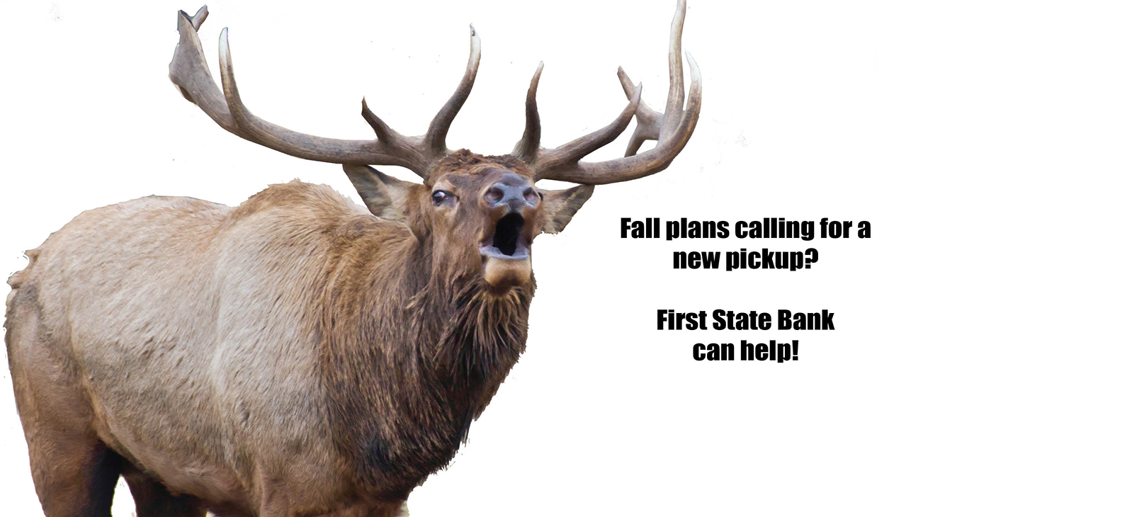 Fall plans calling for a new pickup? First State Bank can help.